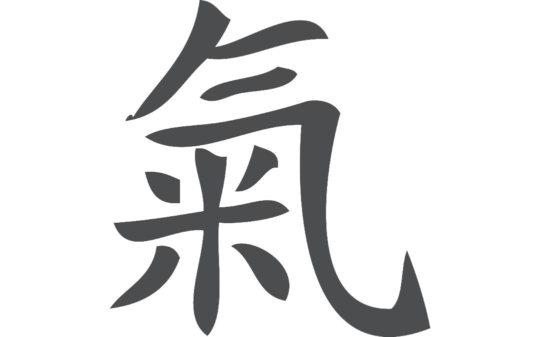 Qi Chinese Medicine Acupuncture San Antonio Texas 2
